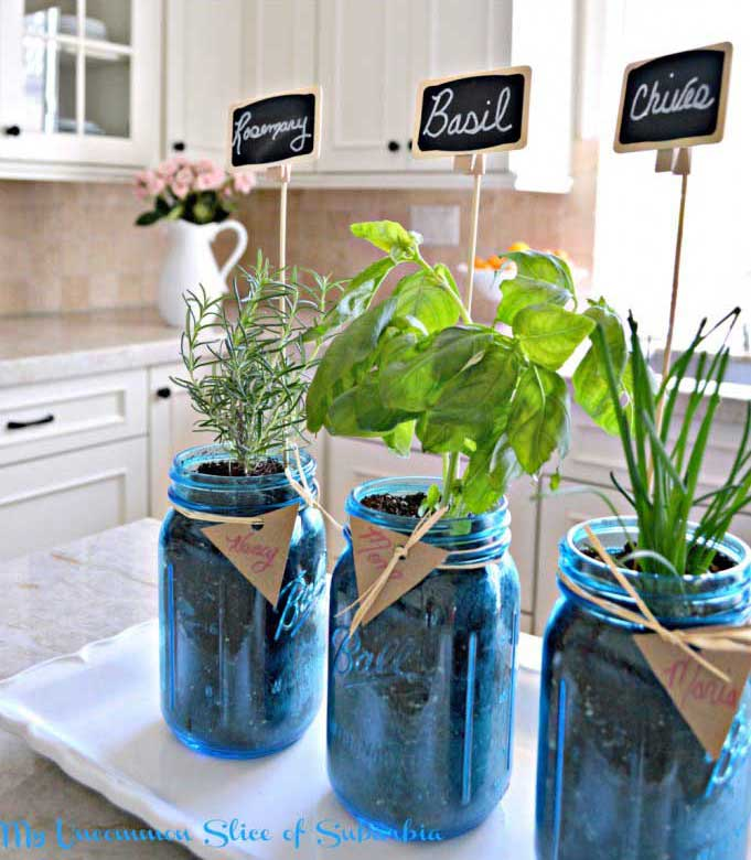 using mason jars to plant an herb garden indoors