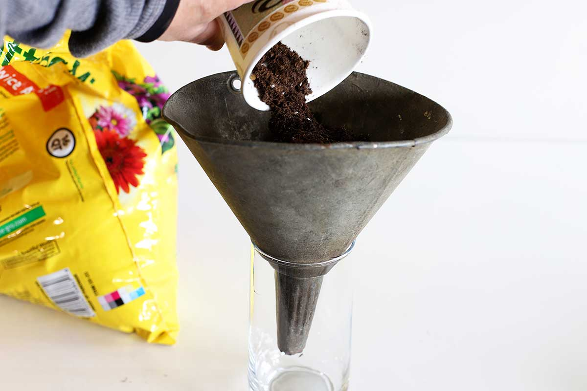 planting in a galvanized funnel