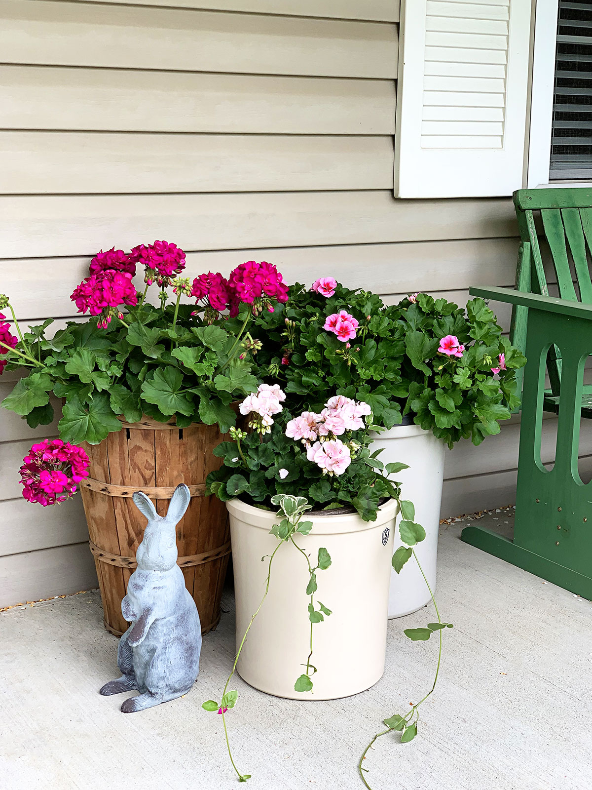 Pink geraniums in crocks and peach basket on the porch.