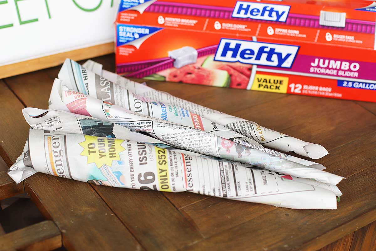Peony stems wrapped in newspaper for storage in the refrigerator.