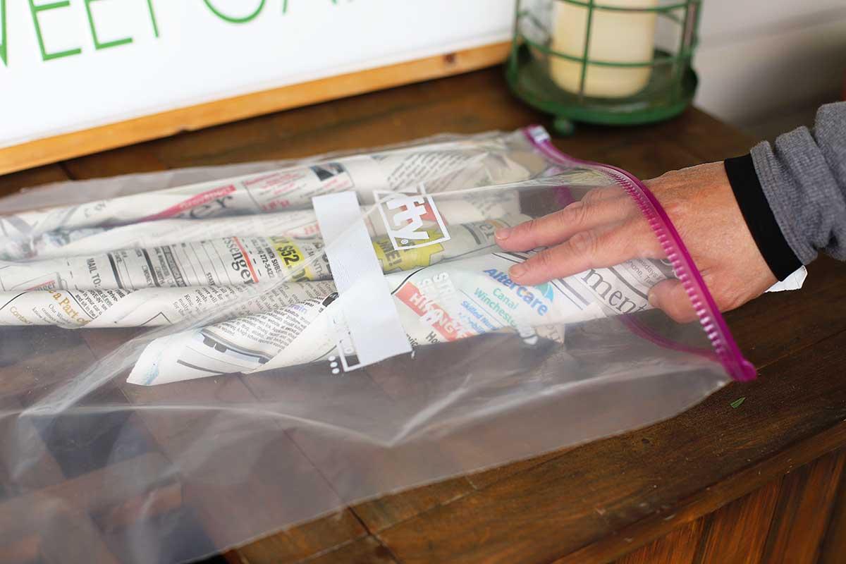 Placing wrapped peonies in a plastic zip lock bag.