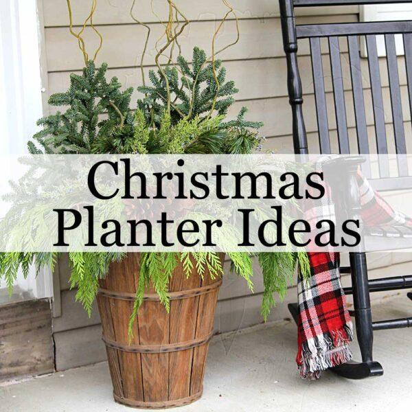 Outdoor Christmas Planter Ideas
