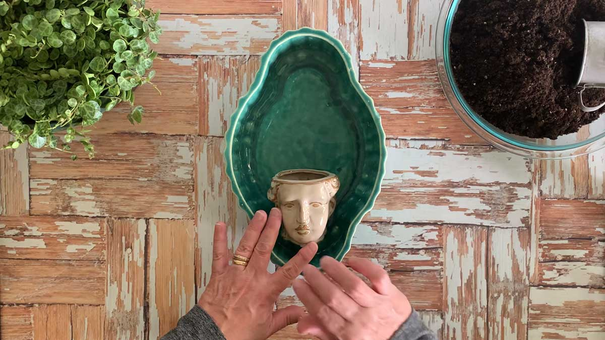 Mini grecian head flower pot setting in a blue bulb bowl