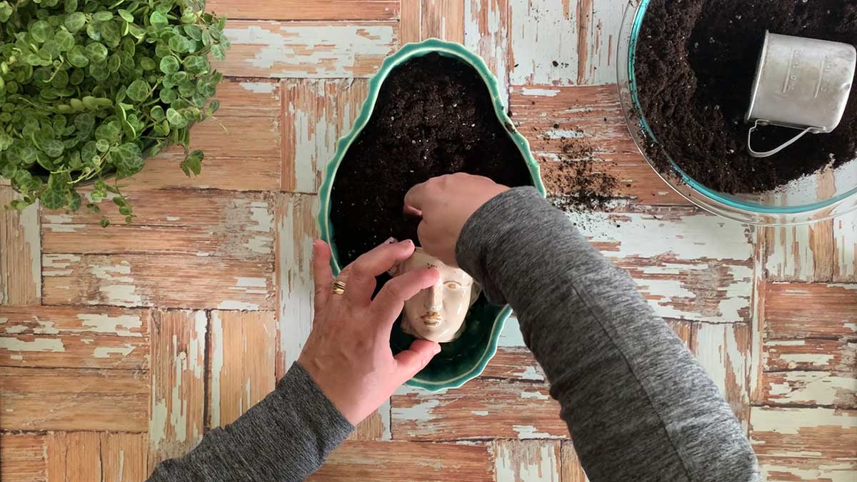 Make sure to put potting soil in the smaller pot also.
