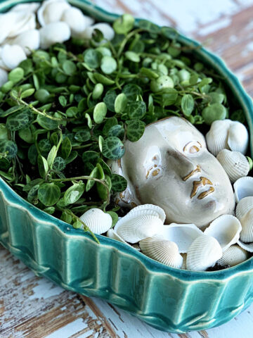 succulent-planter-DIY