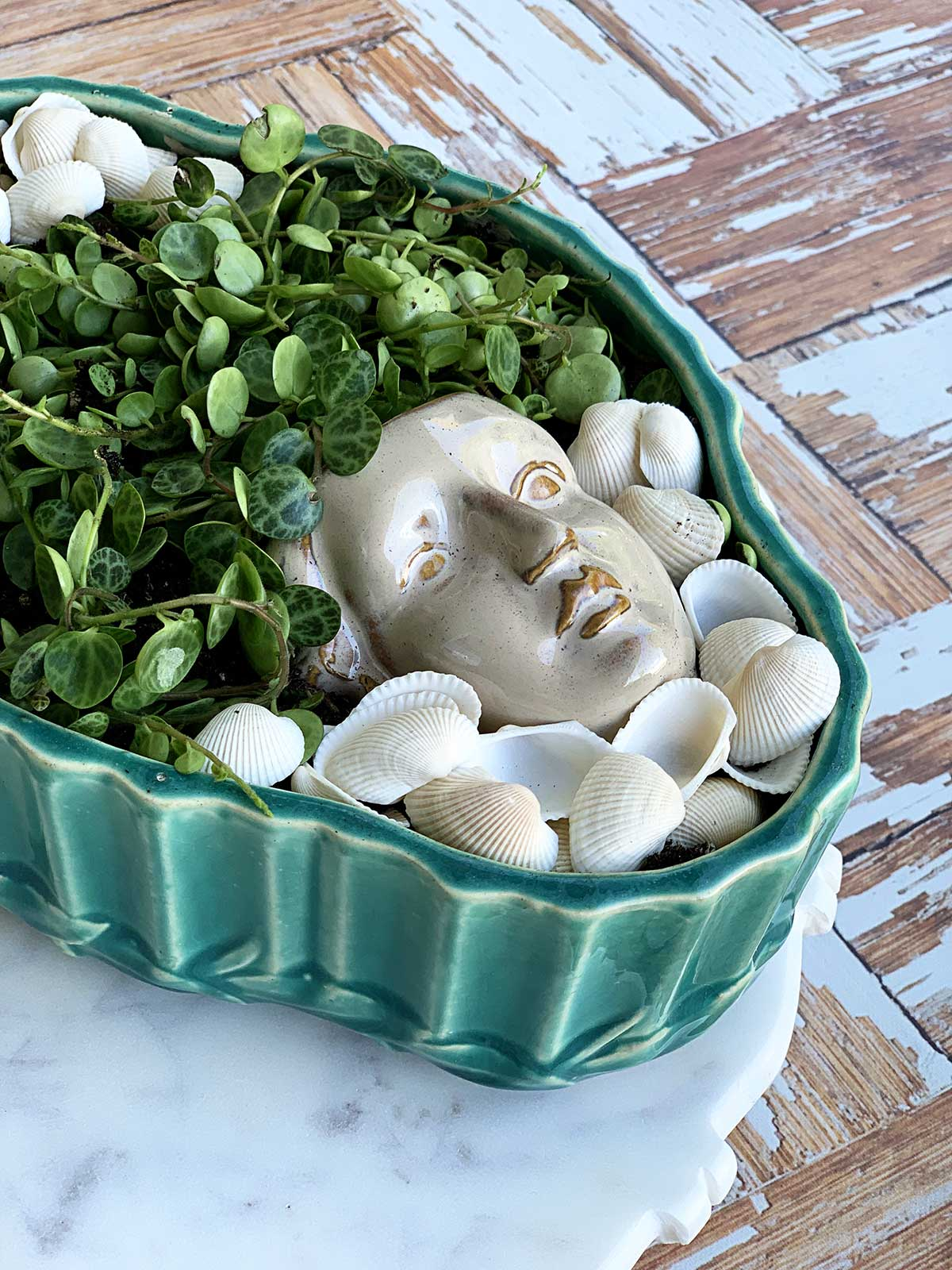 Planter shaped like a head setting in a shallow succulent bowl.