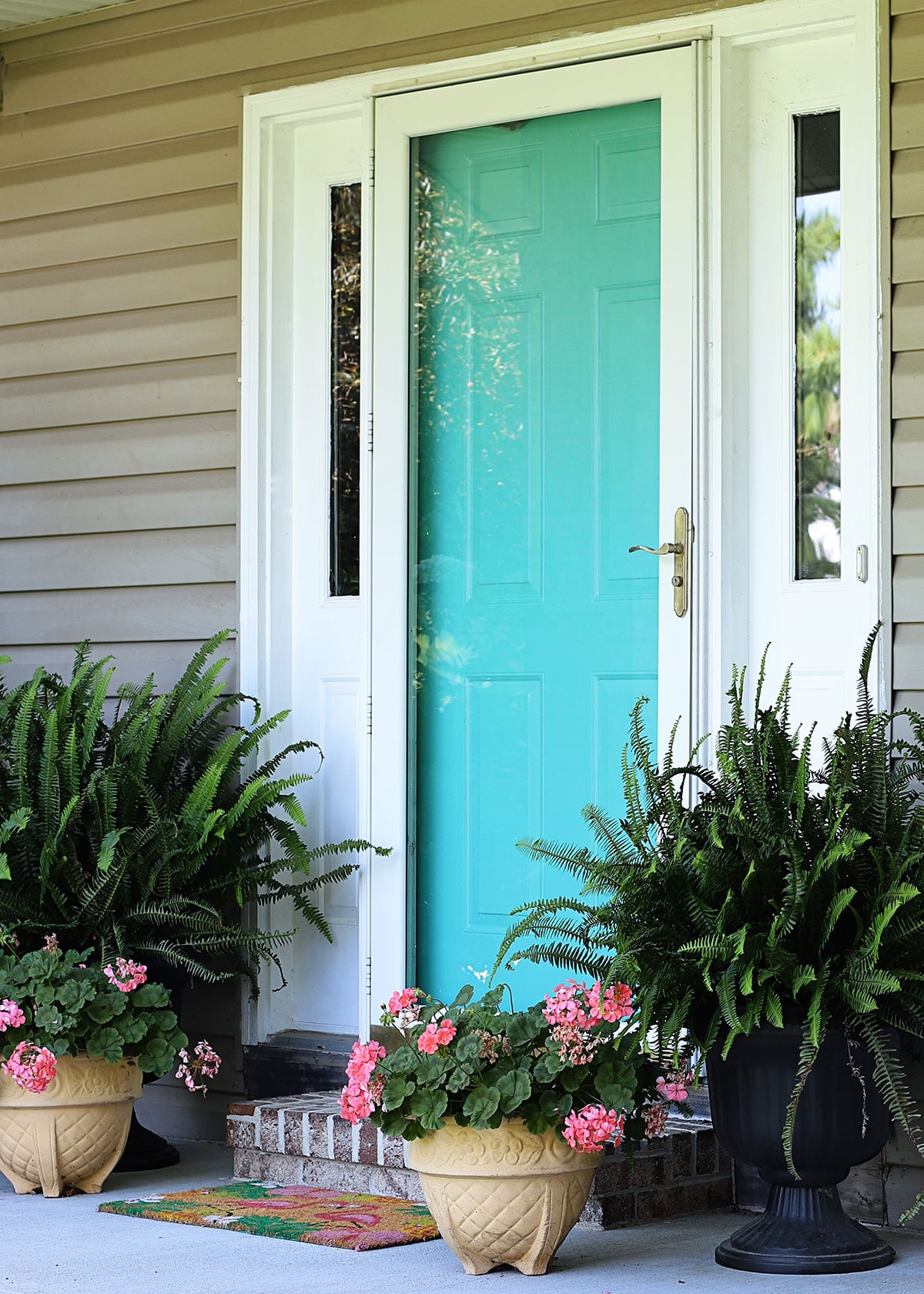 Front door painted turquoise with geraniums and ferns on the porch.