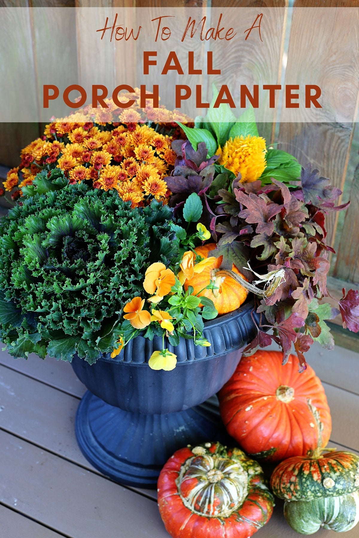 Fall porch planter surrounded by gourds.